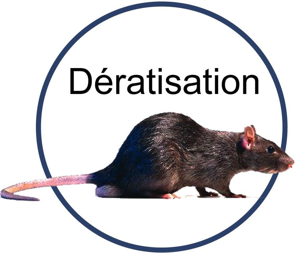 qnafkderatisation mhs[1]